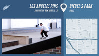 LOS ANGELES PINS -- Biebel's Park