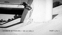 ANDREW REYNOLDS -- Life On Video - Part 5