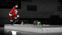 HO HO HO-LE DAMN LEDGE -- with Santa Puds