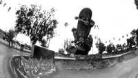 PARK KILLER -- Tyson Peterson - Houghton Park
