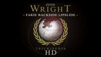 TRICKIPEDIA -- Fakie Backside Lipslide