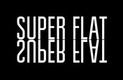 SUPER FLAT: BATTLE AT THE BERRICS -- From The Skateboard Mag Issue 137