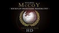 TRICKIPEDIA -- Kickflip Frontside Noseblunt