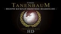 TRICKIPEDIA -- Bigspin Kickflip Frontside Boardslide