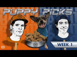 BATB 11 PUPPY PICKS: WEEK 1