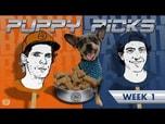 BATB 11 PUPPY PICKS: WEEK 1