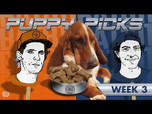 BATB 11 PUPPY PICKS: WEEK 3