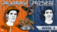 BATB 11 PUPPY PICKS: WEEK 5