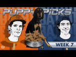 BATB 11 PUPPY PICKS: WEEK 7