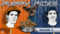 BATB 11 PUPPY PICKS: ROUND 3 WEEK 2