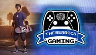 Introducing 'The Berrics Gaming'