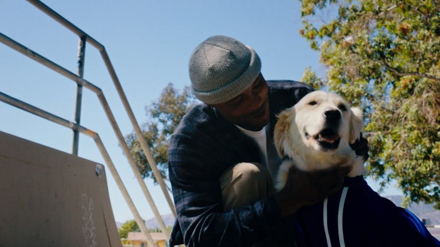 Leticia Bufoni & Dashawn Jordan Reveal How Support Dogs Have Helped Them