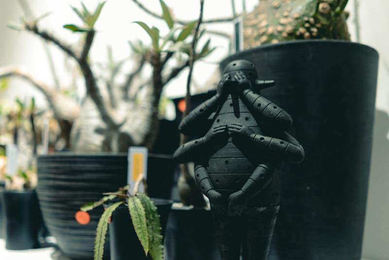 率先走進 Plants of Gods x Parallel Space 首個塊根植物期間限定展覽