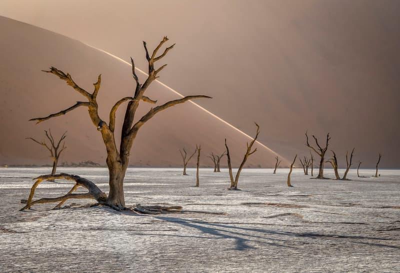 2019 International Landscape  Photographer of the Year 攝影大獎作品正式發佈
