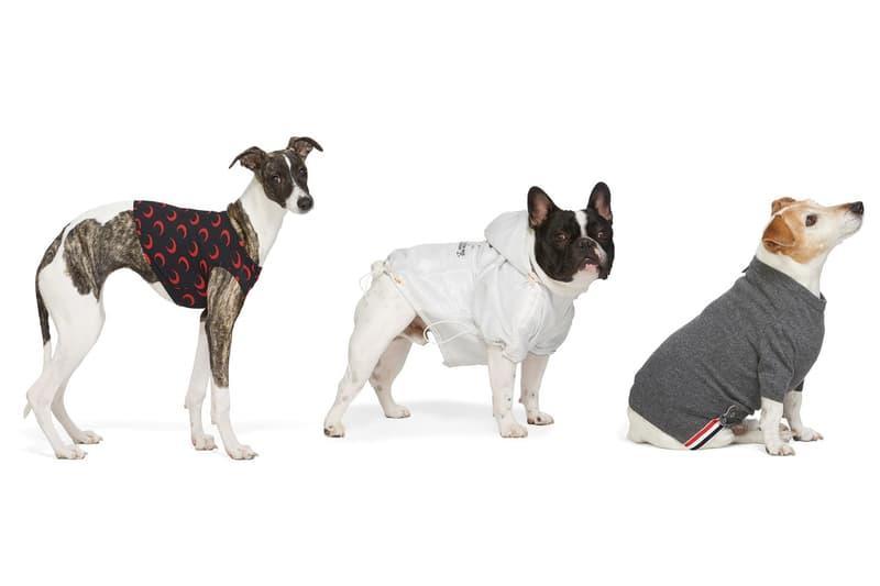 本日精选 SSENSE 8 件狗隻飾物入手推介