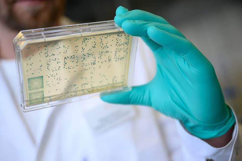 科學家發現人類基因仍在「持續演化」之證據