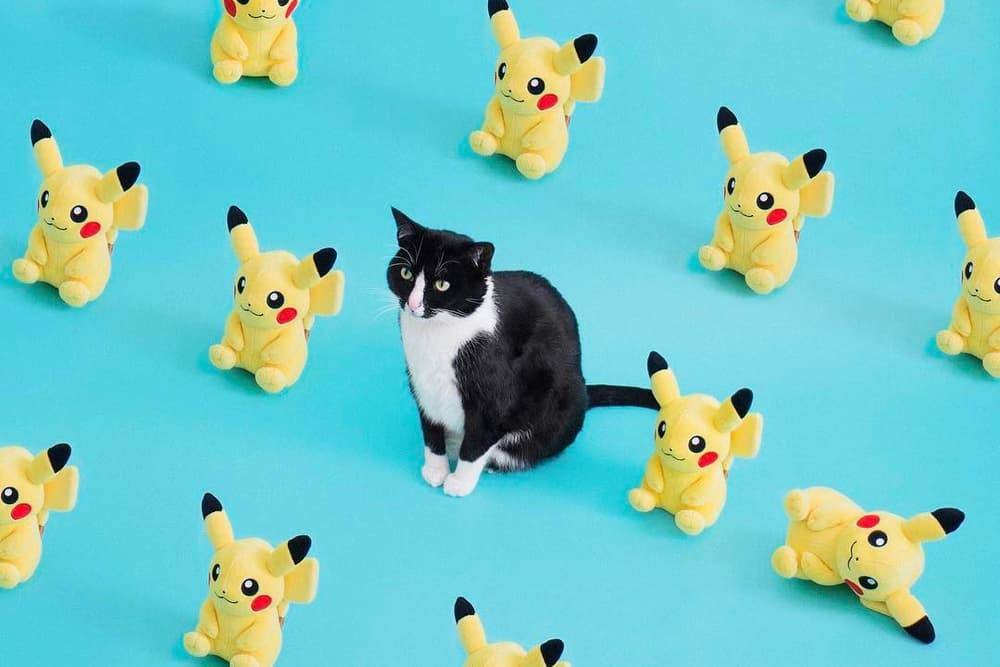 HYPEBAE Favorite Instagram Cash Cats