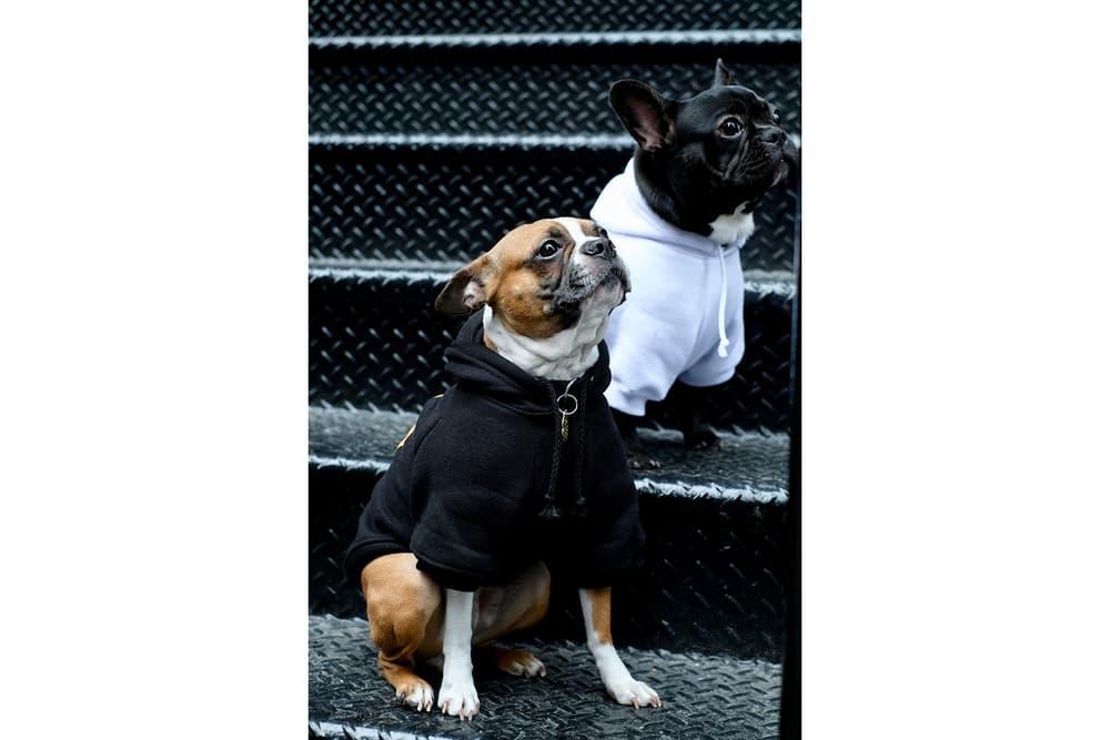 Streetwear Pet Dogs Pawkier Yeezy Puppy Off White Hoodie