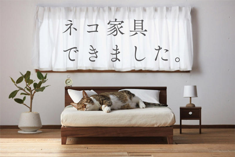 Okawa City Cat Furniture Couches Beds Animals Feline Cute Adorable Miniature