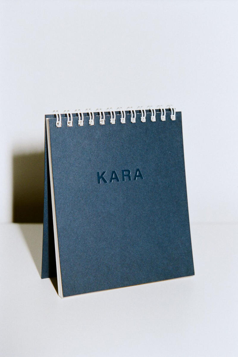 KARA 2018 Desk Calendar Tara Booth Planner Year Gift Stocking Stuffer Ideas Cute Illustrations