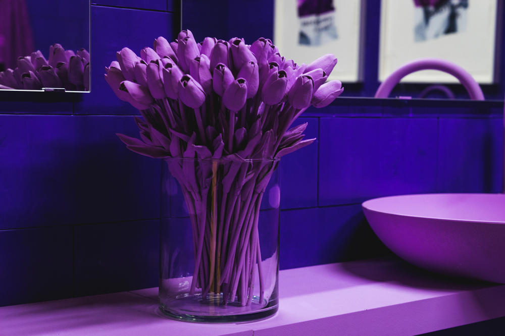 CJ Hendry Monochrome Greenpoint Brooklyn Exhibit Purple Bathroom