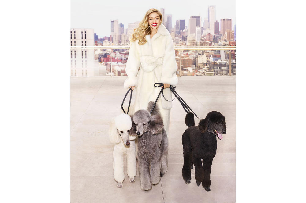 Gigi Hadid Harper's Bazaar May 2018 Issue Cover Editorial Magazine Dogs Puppies Poodle Interview Blake Lively Body Shamers Haters Instagram Social Media Trolls Woman Supporting