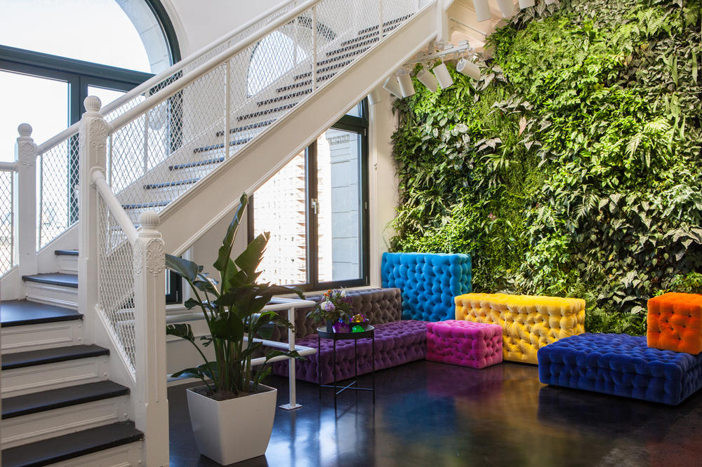 Instagram New York City Office First Look Couches Plant Wall Purple Pink Yellow Blue Yellow Orange