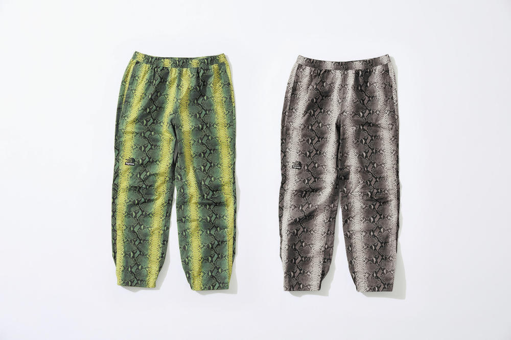 Supreme x The North Face Green Grey Snakeskin Print Pants