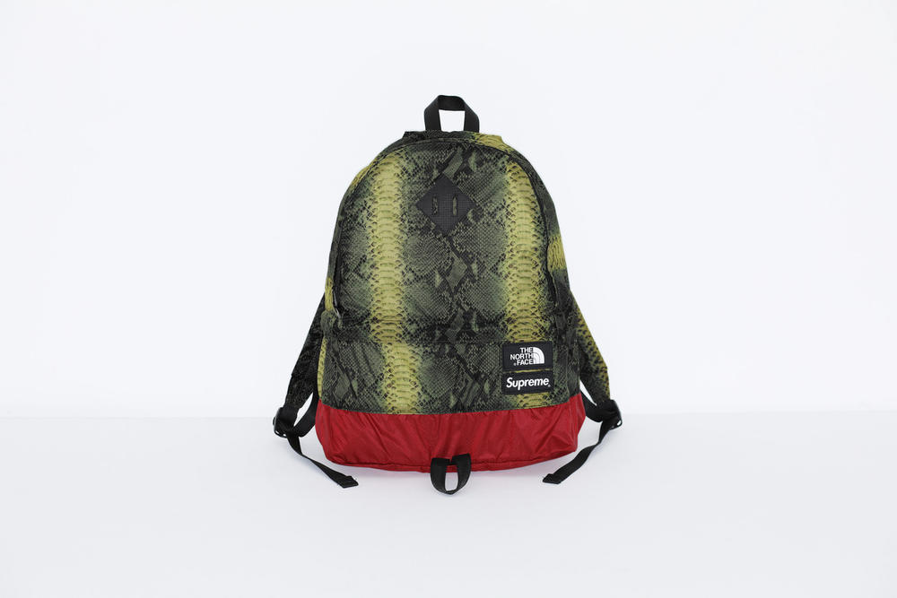 Supreme x The North Face Green Snakeskin Print Backpack