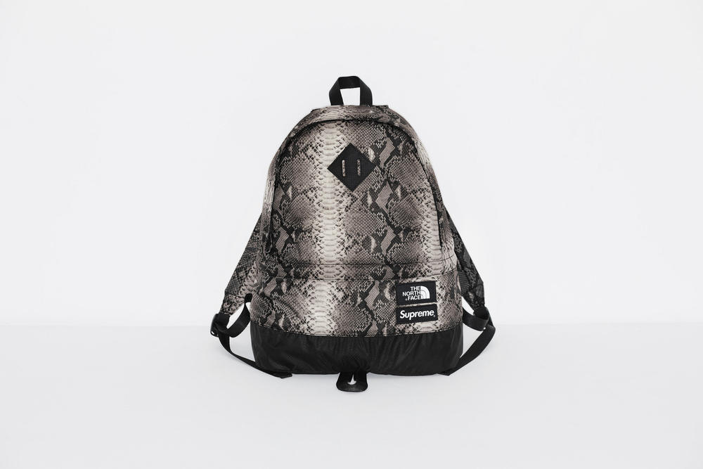 Supreme x The North Face Grey Snakeskin Print Backpack