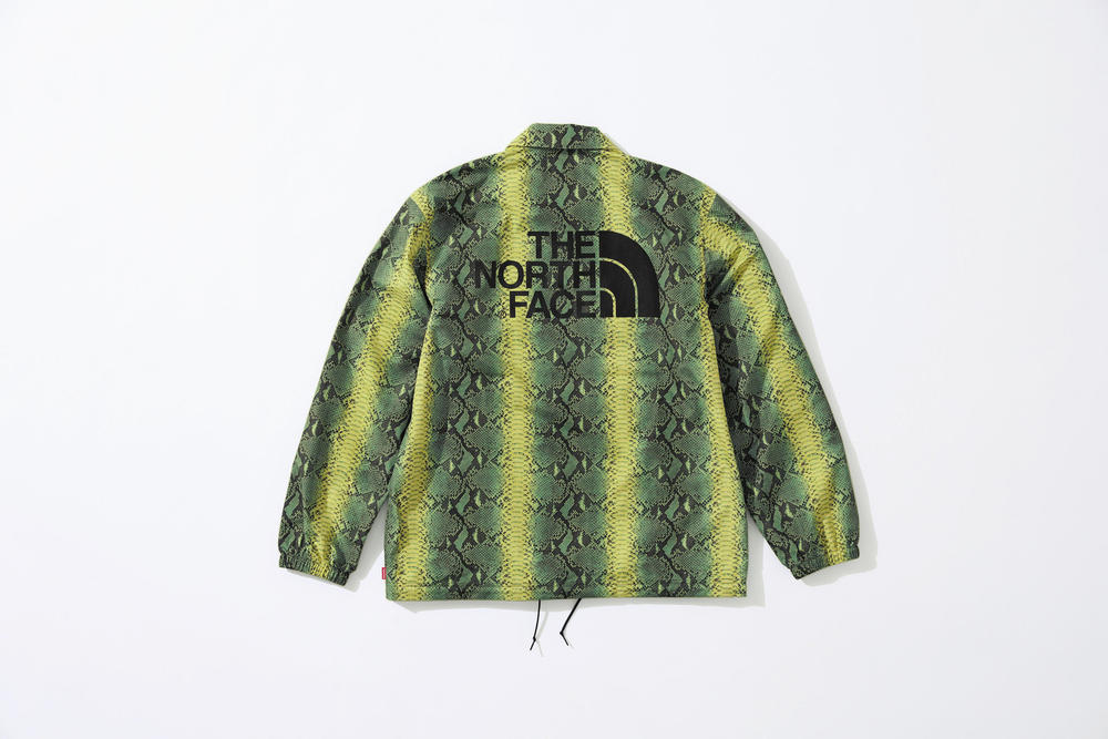 Supreme x The North Face Green Snakeskin Print Jacket