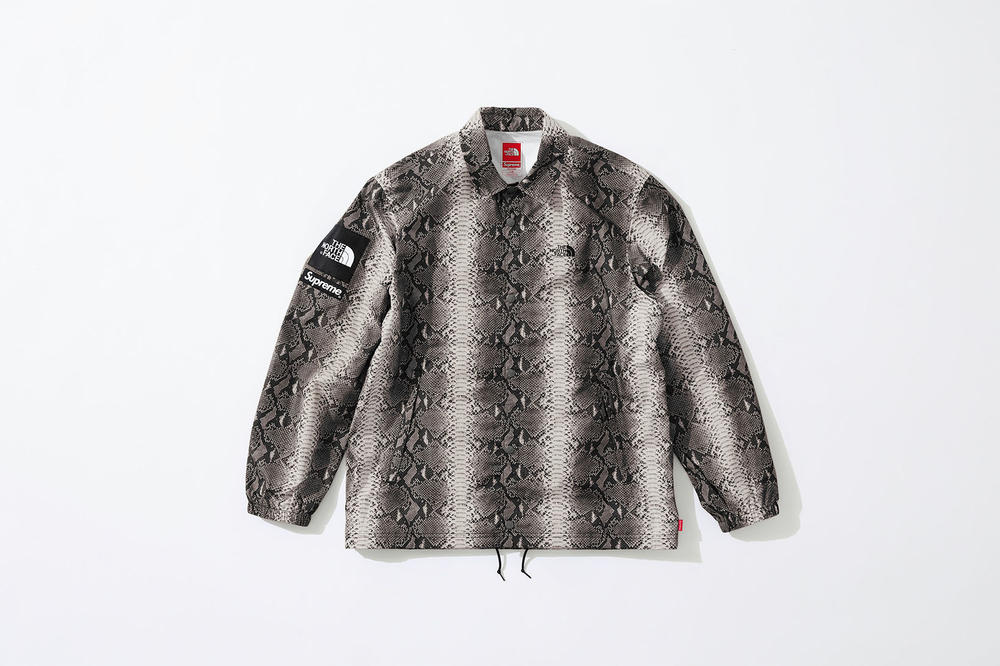 Supreme x The North Face Grey Snakeskin Print Jacket