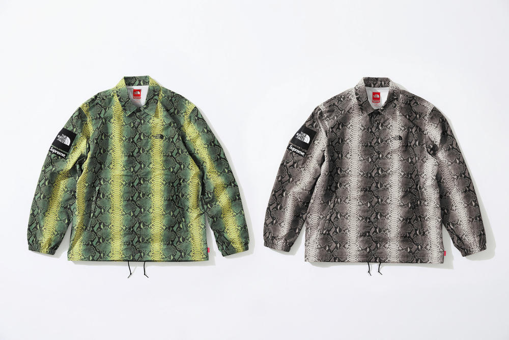 Supreme x The North Face Green Grey Snakeskin Print Jacket