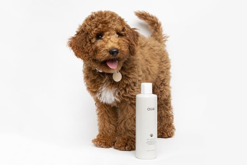 Quai Pet Shampoo Jen Atkins