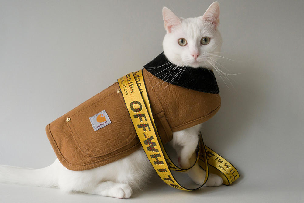 Zappa the Cat Carhartt WIP Off White Industrial Belt Yellow