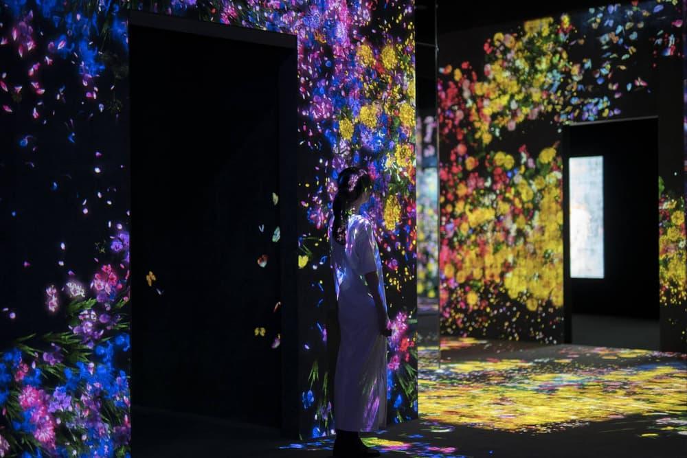 teamLab Borderless Digital Art Museum Installation Tokyo Japan Projection Butterflies