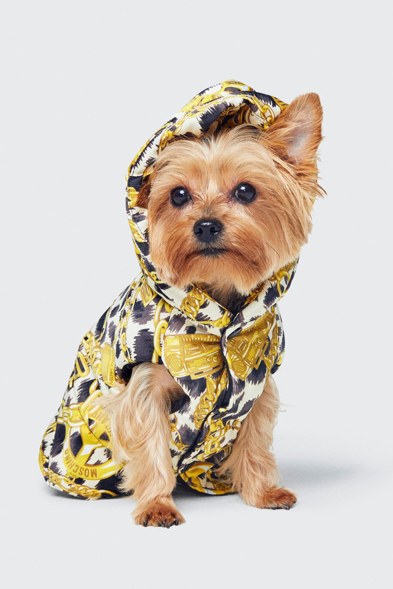 Moschino H&M Collection Lookbook Dog Hoodie Gold Black