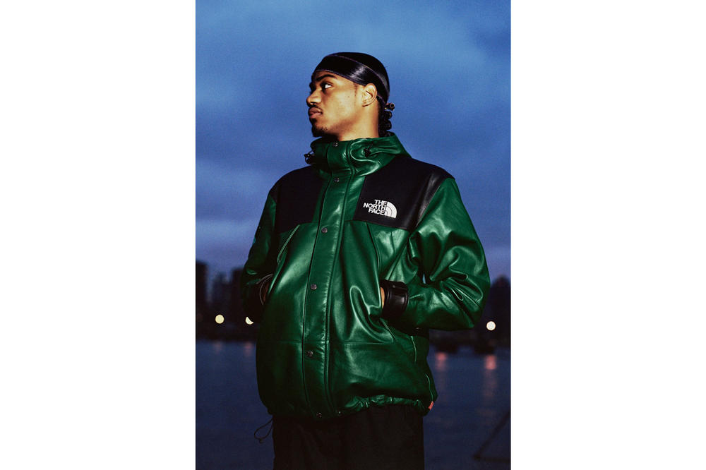 a13ec94a Supreme x The North Face Fall 2018 Leather Collection Mountain Parka Green