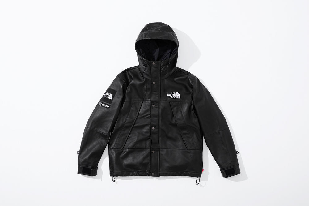 Supreme x The North Face Fall 2018 Leather Collection Mountain Parka Black