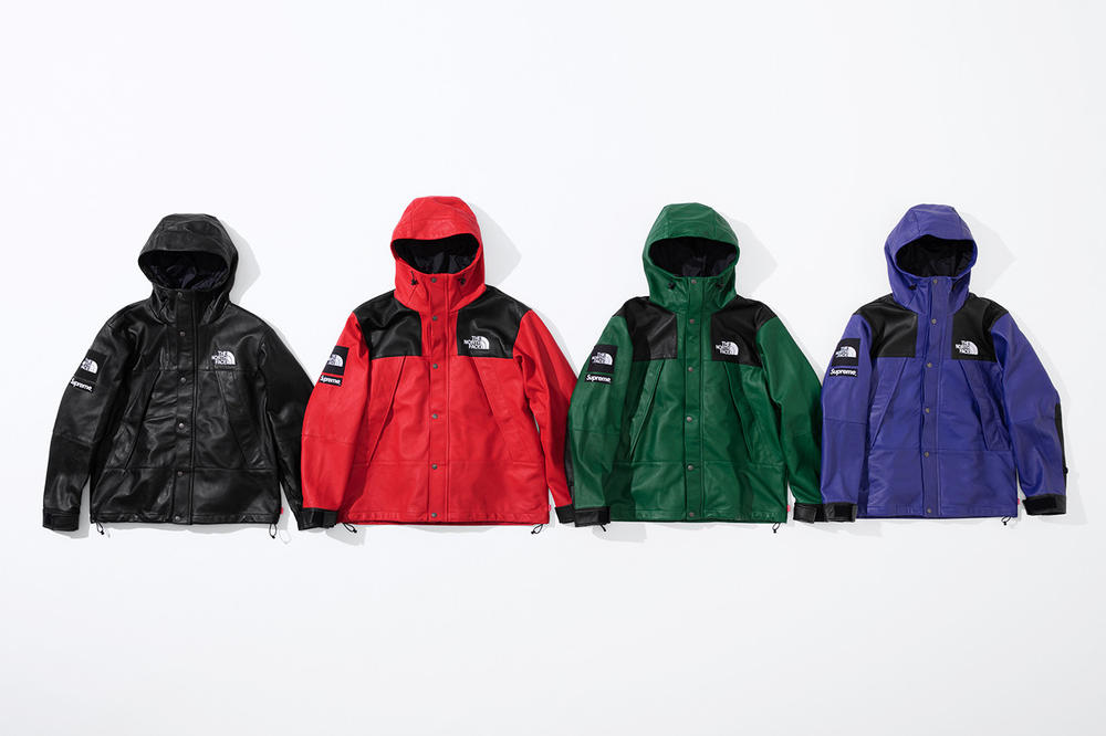 Supreme x The North Face Fall 2018 Leather Collection Mountain Parka Red Green Purple Black