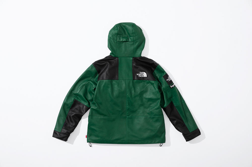 Supreme x The North Face Fall 2018 Leather Collection Mountain Parka Green