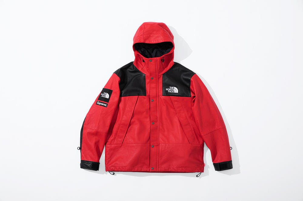 509e7ffe Supreme x The North Face Fall 2018 Leather Collection Mountain Parka Red