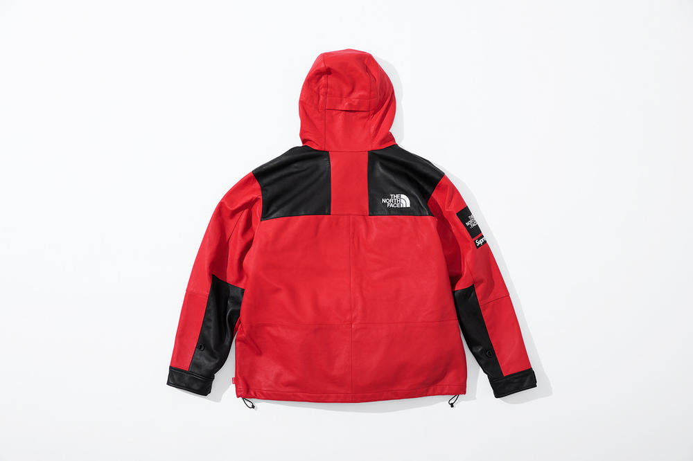 Supreme x The North Face Fall 2018 Leather Collection Mountain Parka Red