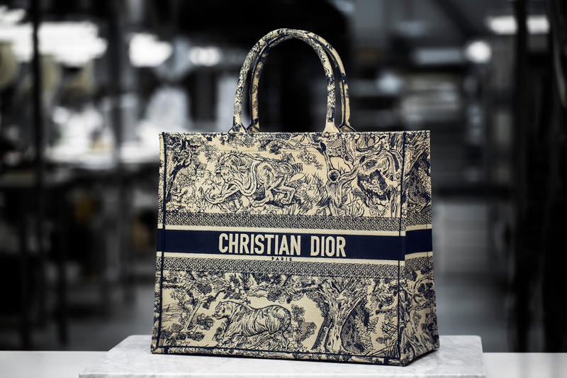 Dior Cruise 2019 Book Tote Toile De Juoy Blue