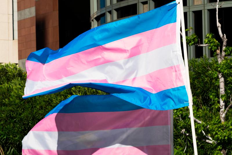 History of the Transgender Flag Pride Month LGBTQ Representation Design Monica Helms Parade Blue Pink White Flag Community