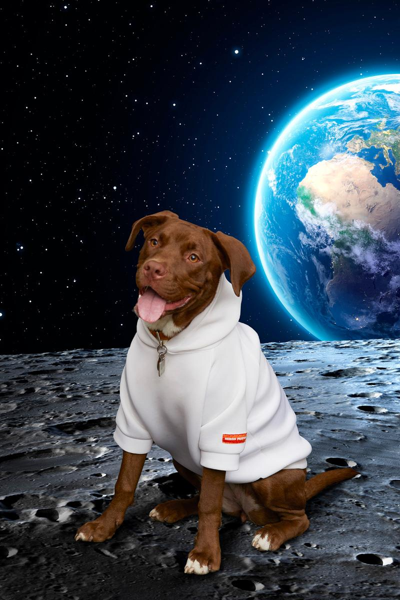Very Important Puppies x Heron Preston NASA Collaboration Hoodie White
