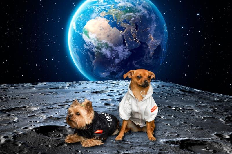 Very Important Puppies x Heron Preston NASA Collaboration Windbreaker White Black