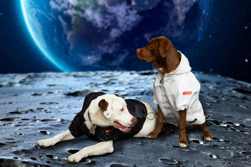 Very Important Puppies x Heron Preston NASA Collaboration Windbreaker Black White