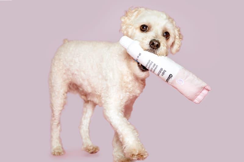 glossier bark dog toys makeup beauty pets balm dot com