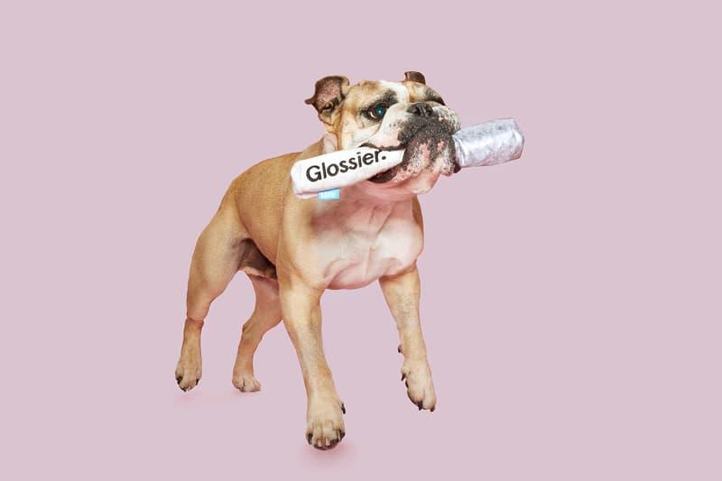 glossier bark dog toys makeup beauty pets boy brow